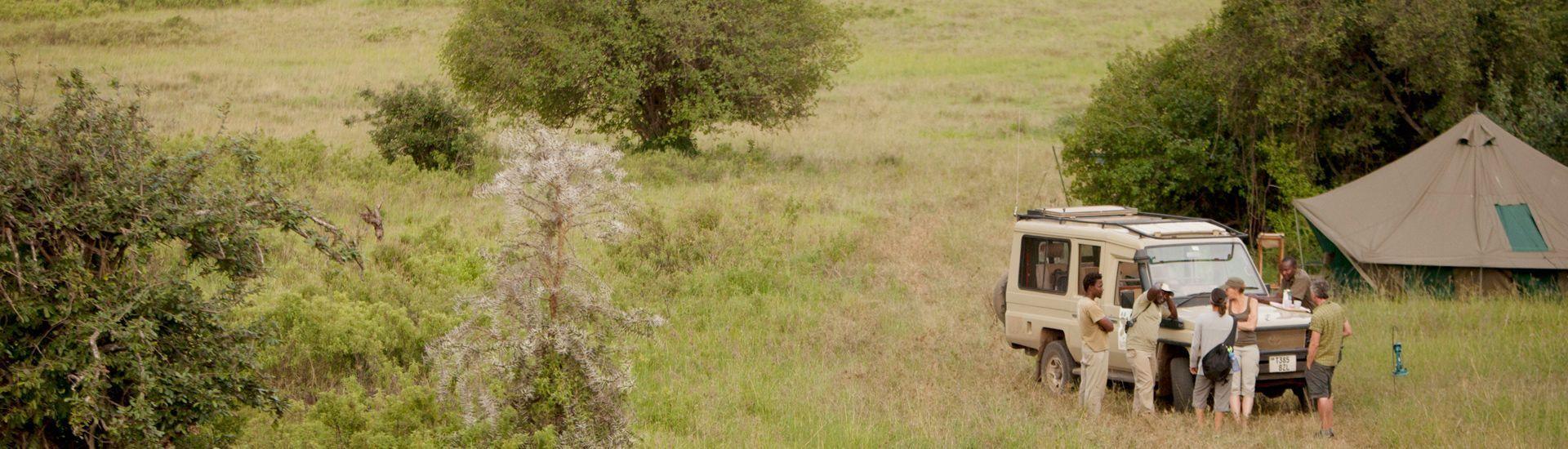 años de experiencia en safaris